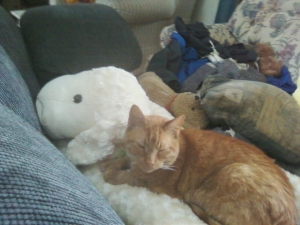 Happy kitty cuddling with friends ...