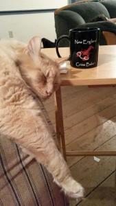 cat & mug Feb 2015